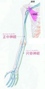 椀神経絞扼