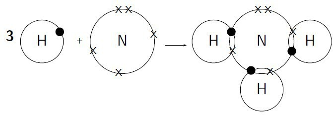 Explain the formation of ammonia molecule with the help of