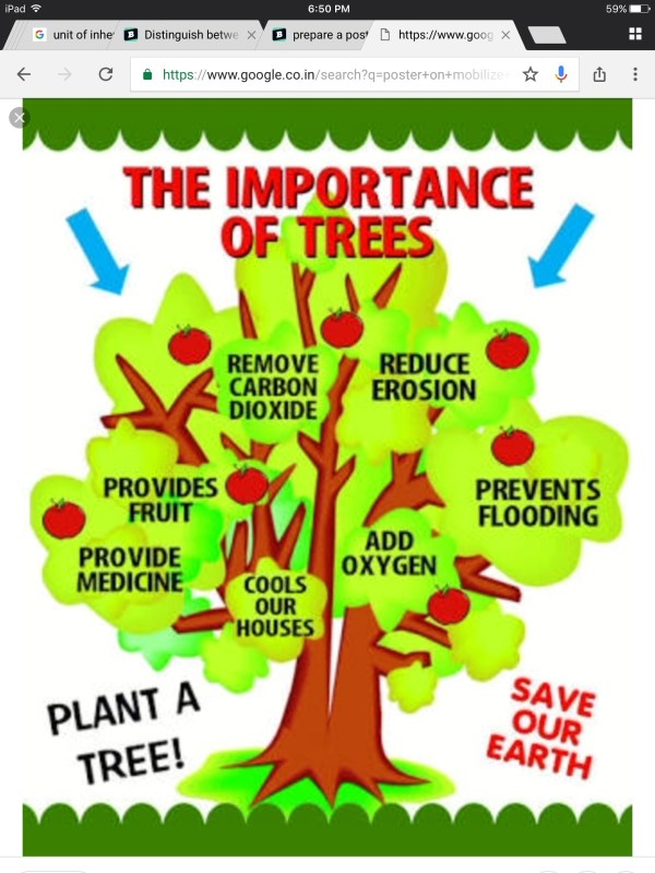 Prepare Poster In English Mobilize Social Forestry