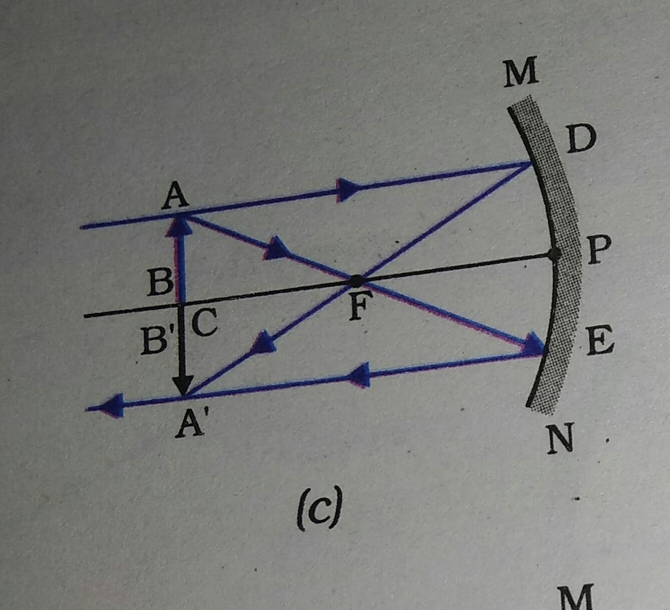 Draw The Ray Diagram Of Image Formation By A Convex Mirror