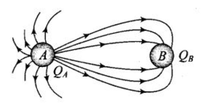 10. The figure below shows the electric field lines around