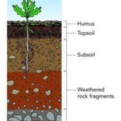 Soil Profile Diagram Of Michigan Bargman Trailer Wiring How To Make Brainly In