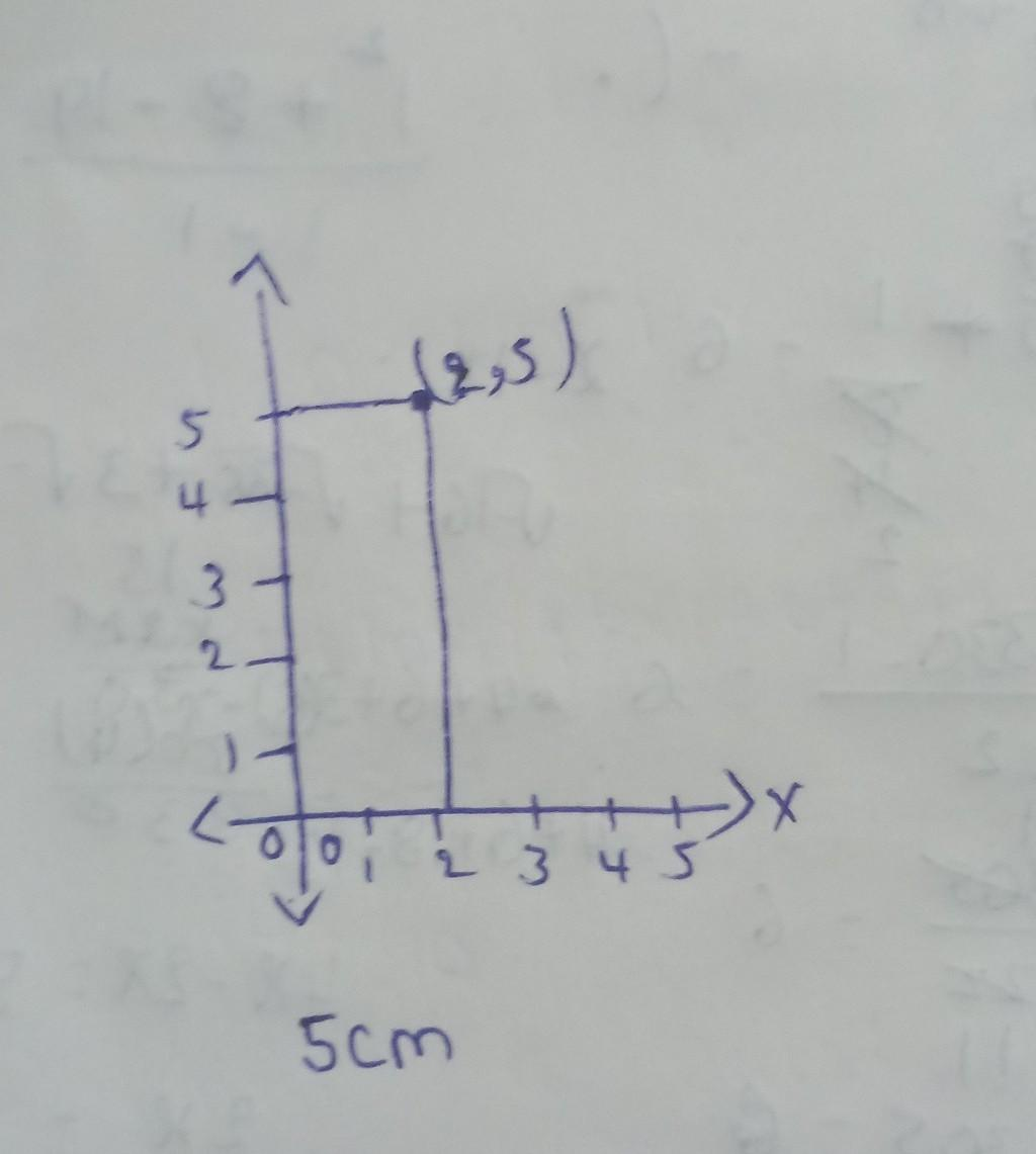 How Far Away From Zero On The Y Axis Is The Point 2 5