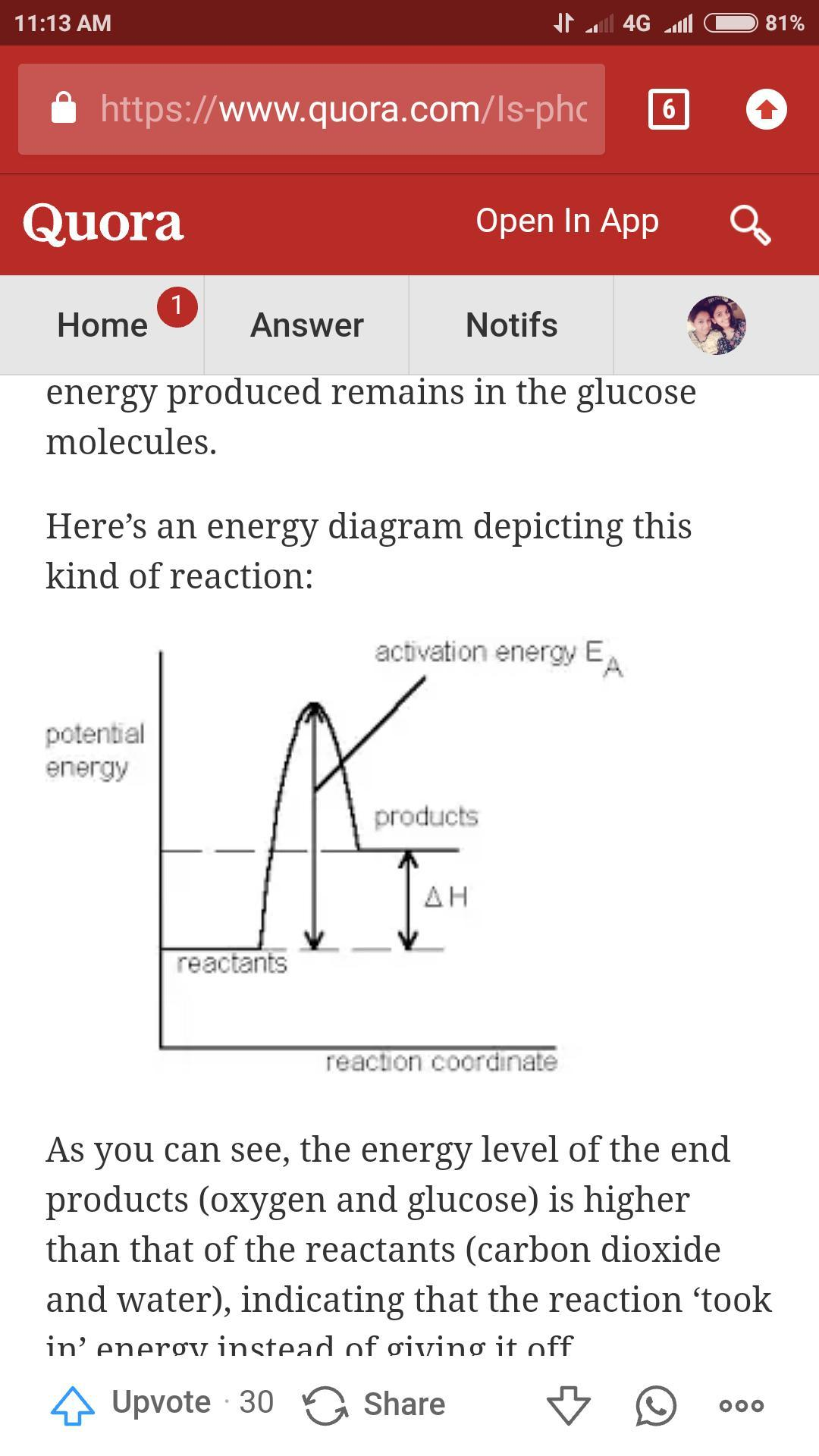 Is The Balanced Equation Of Photosynthesis Is Exothermic