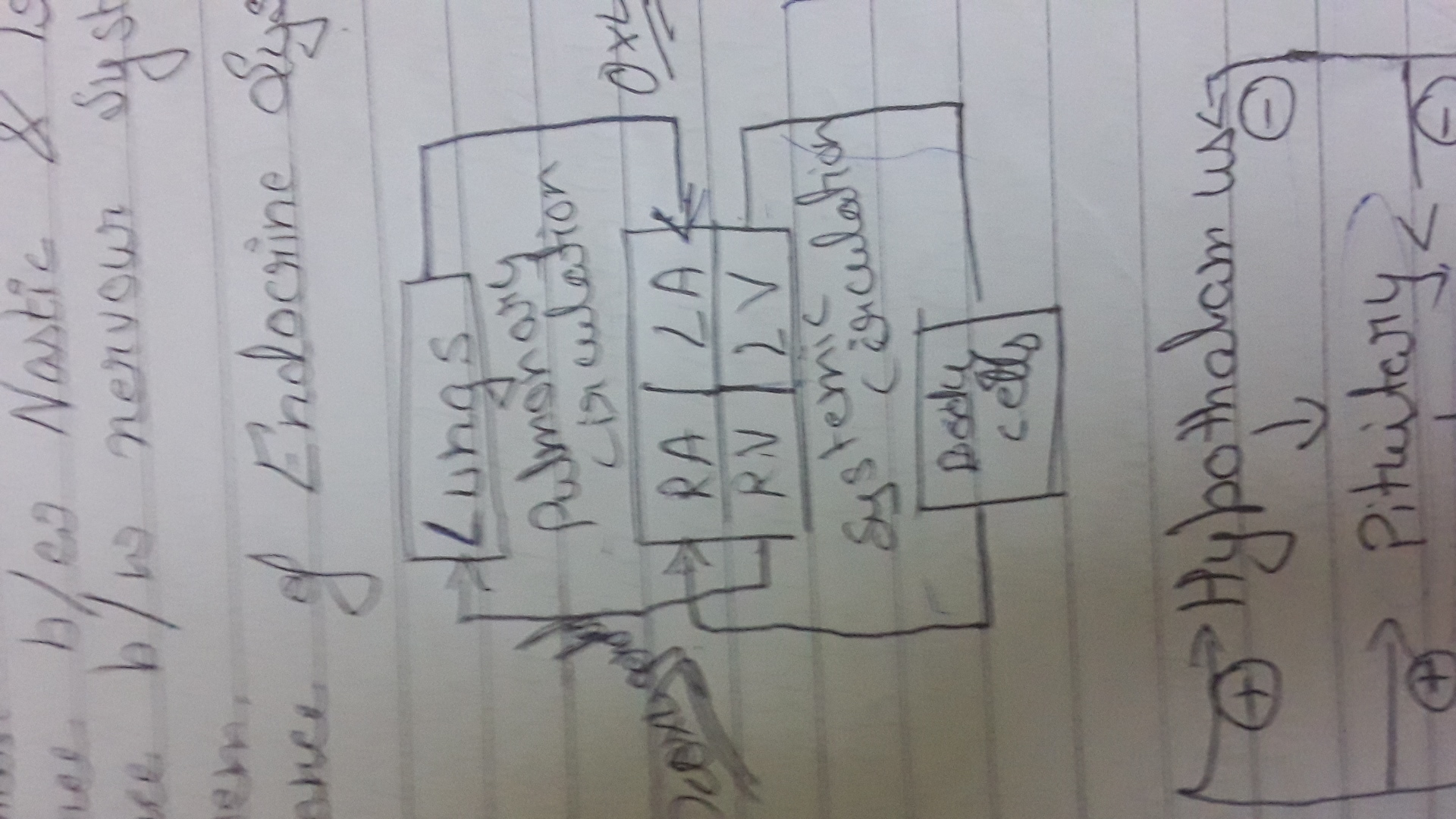 Draw A Block Diagram To Explain Single And Double