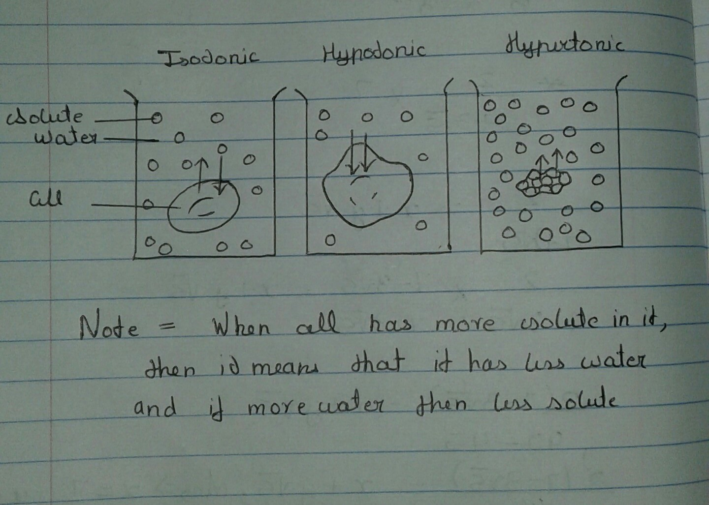 Write A Short Note On Hypertonic Hypotonic And Isotonic