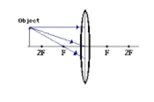 draw the ray diagram to show image formation of an object