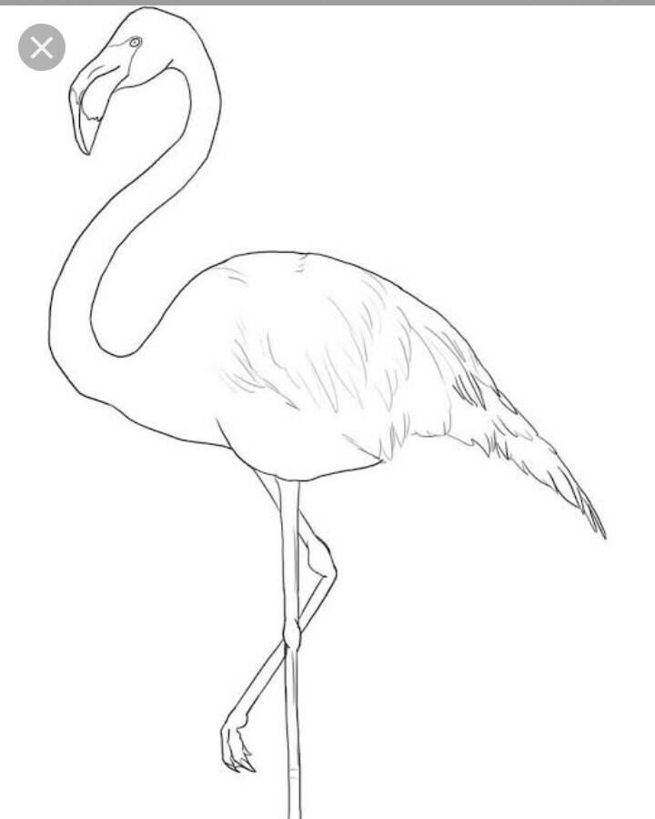 2 english ch 1 flamingo draw a character sketch of m