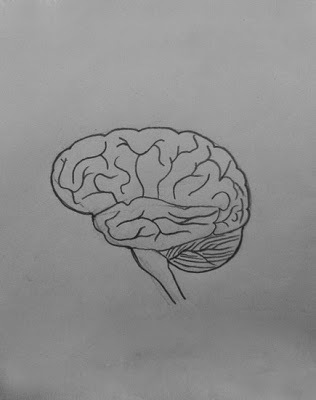 easy brain diagram nissan 240sx wiring steps to draw human class 10 ncert write down each step 0