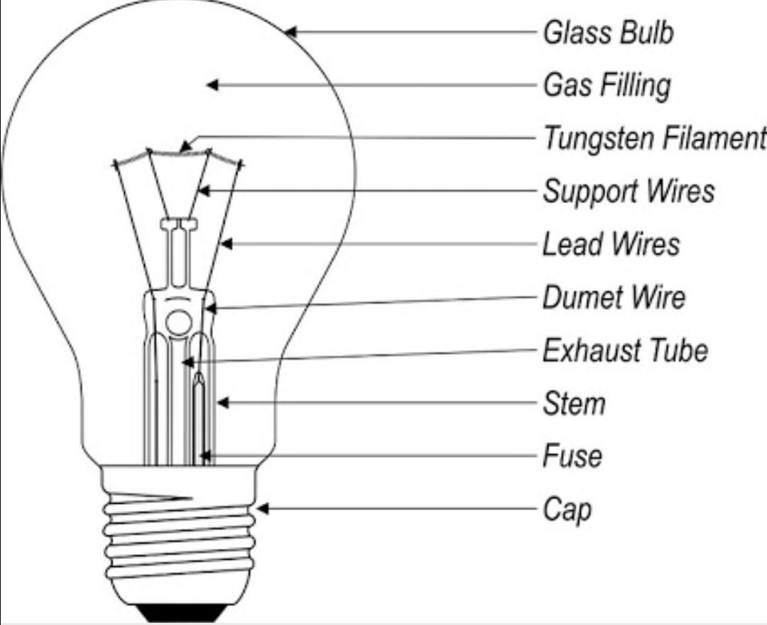 Draw A Labelled Diagram Of An Electric Bulb Explain Its
