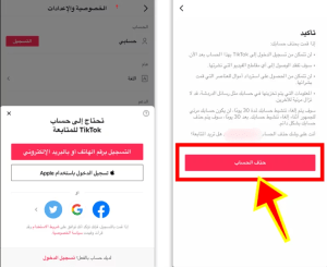 How to delete a TikTok account temporarily or permanently