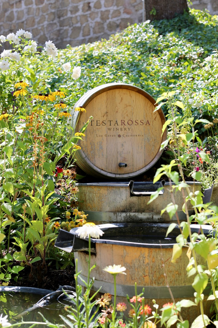 Testaroosa Winery