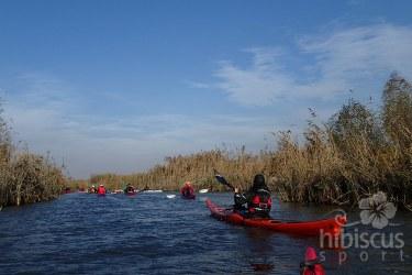 Tura-in-caiac-Delta-Dunarii-Hibiscus-Sport--13