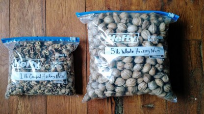 one pound cracked hickory nuts 5 pounds whole hickory nuts