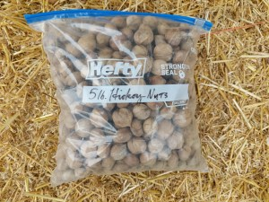 5 pound bag of whole hickory nuts