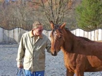 Photo-Horses_224