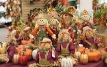 Fall Harvest Hicks Nurseries Pumpkins Wreaths