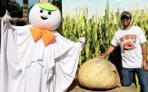 Fall Harvest & Giant Pumpkin Contest Hicks Nurseries