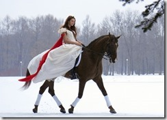 馬のドレスキャプチャ