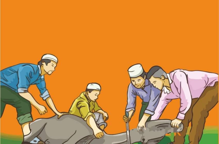 Jelang Idul Adha, Waspada Kenaikan Harga Sapi