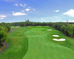 golfing Cavendish