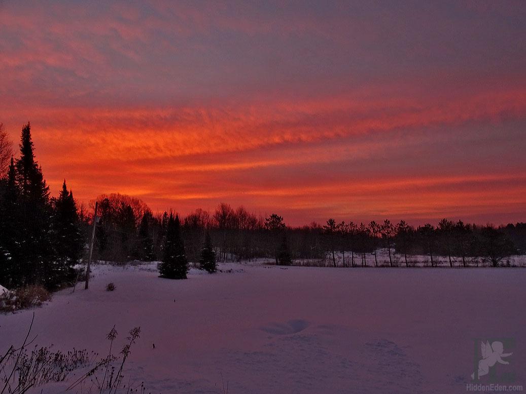 Muskoka sunrise in the country