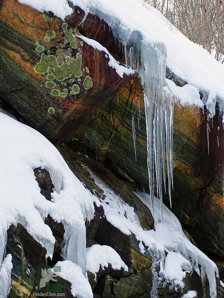 Muskoka icicles and granite