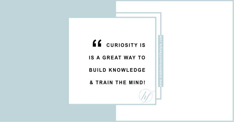 CURIOSITY IS A GREAT WAY TO BUILD KNOWLEDGE AND TRAIN THE MIND