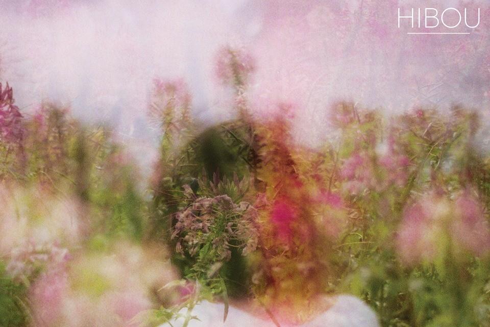Hibou - Hidden Herd