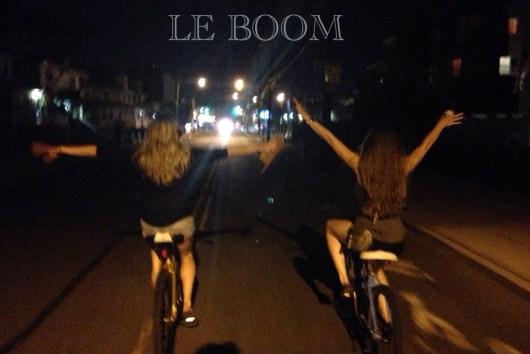 Le Boom - Hidden Herd