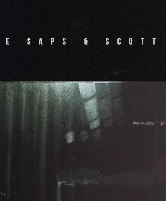 Richie Saps - Hidden Herd