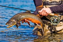 Fishing Highlands catch Fly Fishing Tour | Hidden Iceland