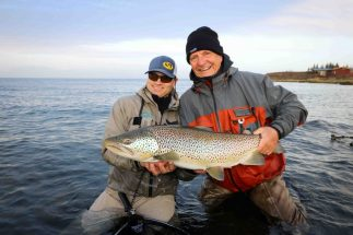 Big Brown Trout | Fly Fishing Tour | Hidden Iceland
