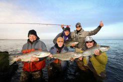 Brown Trout Group Catch | Fly Fishing Tour | Hidden Iceland