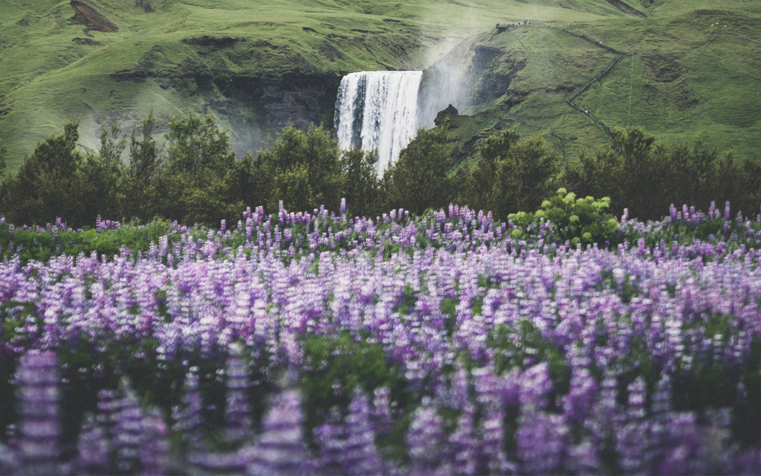 Skógafoss   South Coast Fire & Ice tour   Hidden Iceland   Photo by Norris Niman * Feature