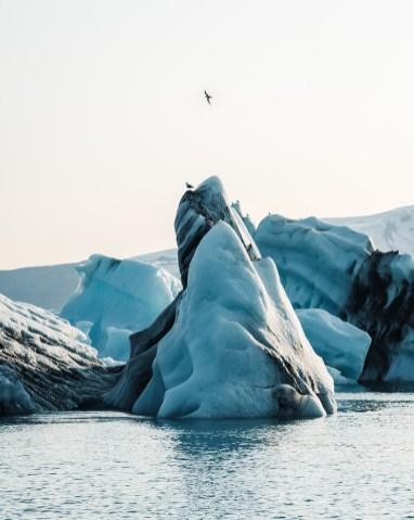 Icebergs in Jökulsárlón Glacier Lagoon. Jokulsarlon Glacier Lagoon 2 Day Tour. Hidden Iceland