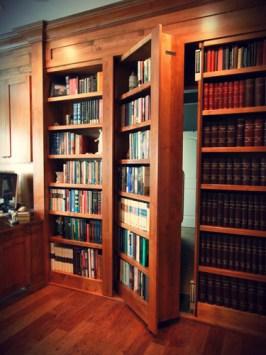 Vault bookcase door