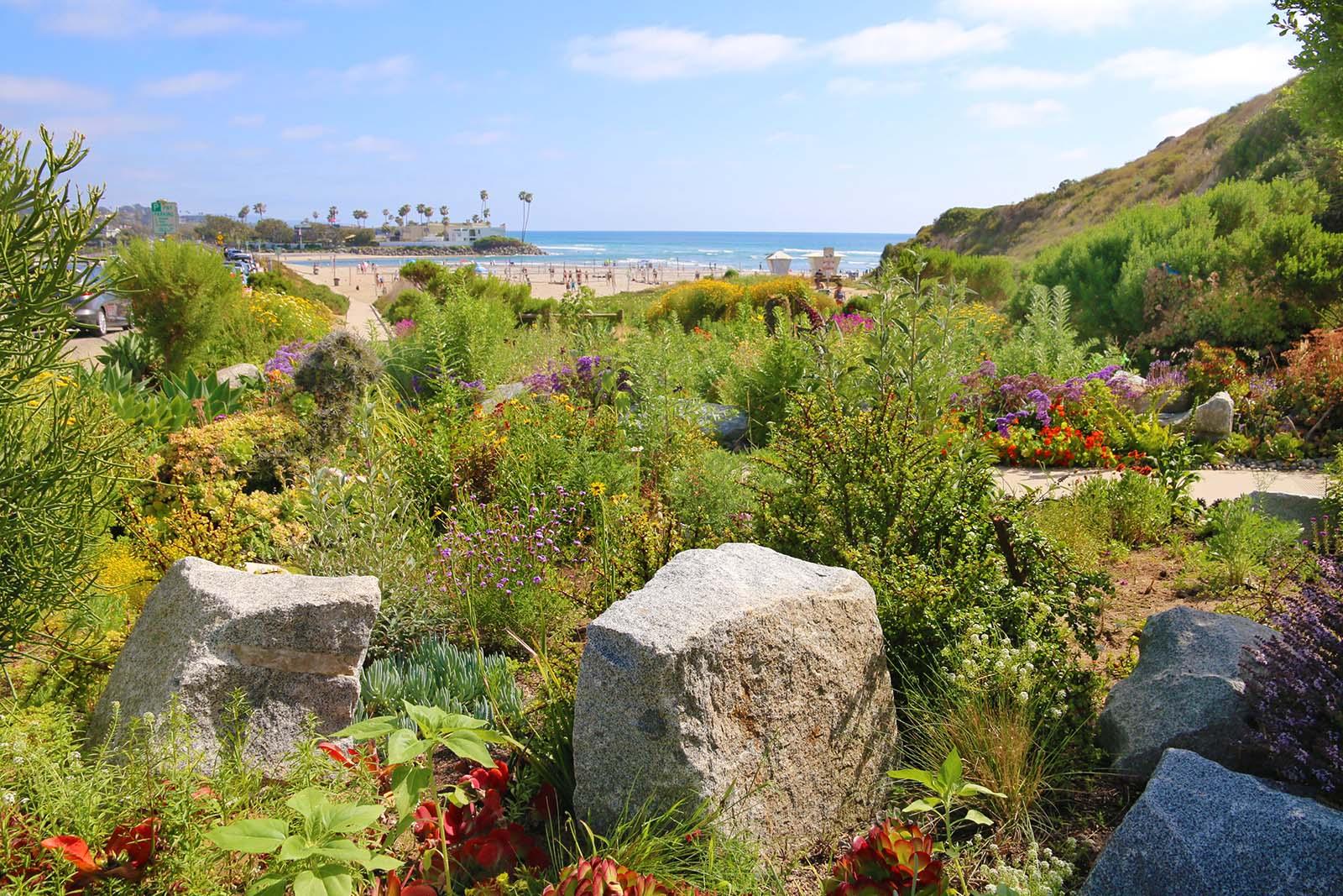 Del Mar Dog Beach Memorial (2)