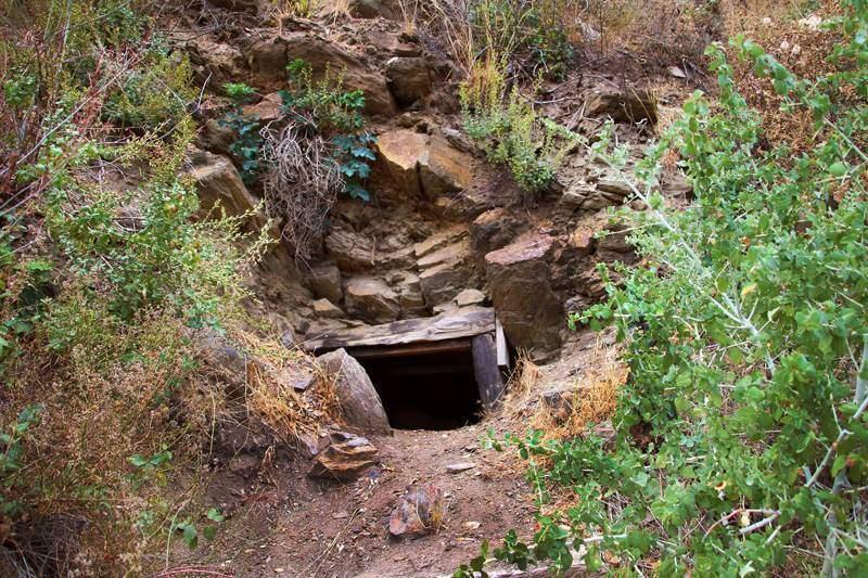 Golden Gem Mine
