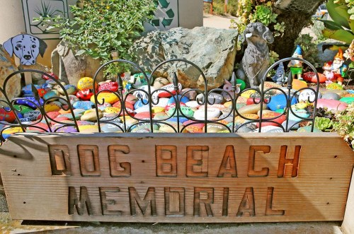 Dog Beach Memorial Garden hidden san diego