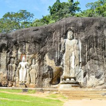 Fels mit Buddhas in Sri Lanka