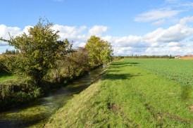 Grüner Hüllgraben in München mit Feld