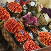 Tomaten auf dem Zentralmarkt Port Louis Mauritius