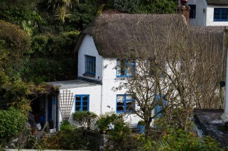 Reetdachhaus blaue Fensterrahmen Cadgwith