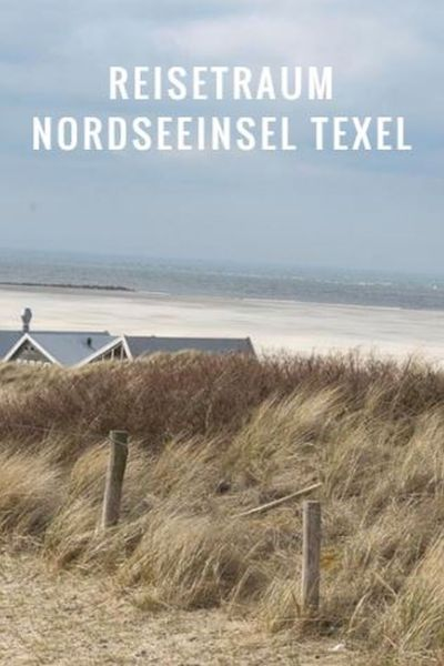 Texel Pinterest Pin deutsch