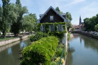Zugewachsenes Haus in Straßurg