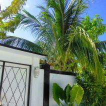 Portal at Maafushi
