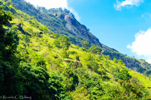 Mountain in Sri Lanka