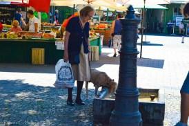 Dog drinking at the Viktualienmarkt