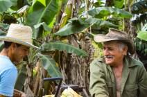 Campesinos in Vinales